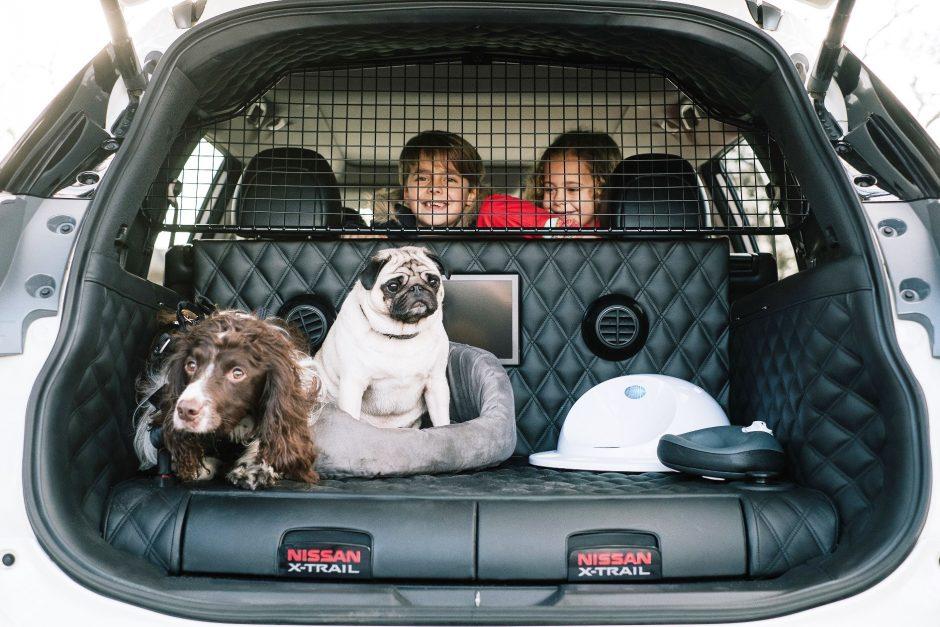 nissan x trail 4dogs a tu perro le encantar. Black Bedroom Furniture Sets. Home Design Ideas