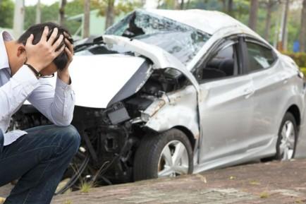 ¿De quién es la responsabilidad en un accidente con animales? - SoyMotor.com