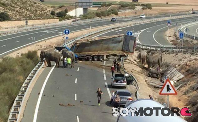 Un camión con cinco elefantes vuelca en la A-30  - SoyMotor.com