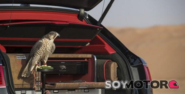 Bentayga Falconry: el Bentley para halcones y...¡todos contentos! - SoyMotor.com