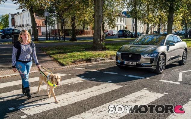 Atropello coche eléctrico - SoyMotor.com