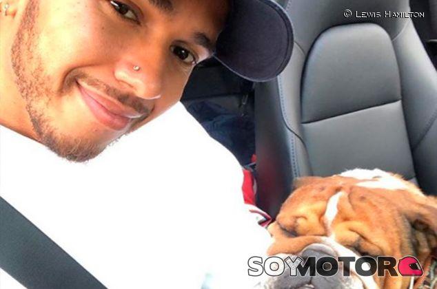 Lewis Hamilton y su perro Roscoe - SoyMotor.com