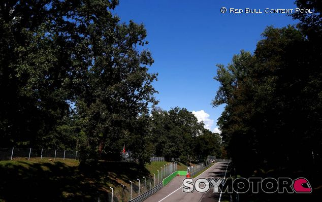 Daniil Kvyat en el Gran Premio de Italia de 2015 - LaF1