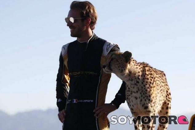 Vergne, junto a un guepardo, su rival en esta ocasión - SoyMotor.com