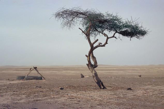 C'est l'Afrique, patron: el origen del Dakar - SoyMotor.com