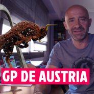 GP Austria F1 2016, las claves