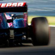 Jean-Éric Vergne durante el Gran Premio de Japón - LaF1