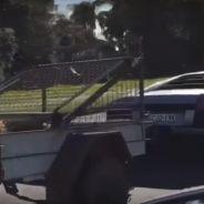 Lamborghini Murciélago tira de un remolque con cabras