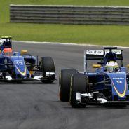 Ericsson y Nasr afrontan la última carrera de la temporada con tranquilidad - LaF1