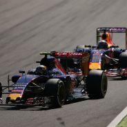Toro Rosso estará por delante de Red Bull en las primeras carreras - LaF1