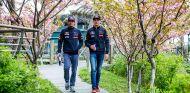 GP de China F1 2015: Viernes