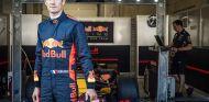 El sueño hecho realidad de Ogier al volante del Red Bull RB7 - SoyMotor.com