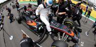Fernando Alonso en la parrilla de salida de Brasil - LaF1