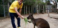 Alonso desconecta en el zoo antes del GP de Australia - SoyMotor