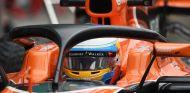 Fernando Alonso, con el halo en su MCL32 - SoyMotor.com