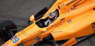 Más de dos millones de personas siguieron el test de Indy de Alonsoo - SoyMotor.com