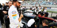 Fernando Alonso en la parrilla de salida de Baréin - LaF1