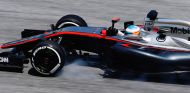 Fernando Alonso en Sepang - LaF1