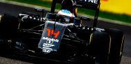 Fernando Alonso en el Gran Premio de Japón - LaF1