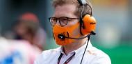 La F1 debe aclarar qué motor quiere en el futuro, avisa Seidl - SoyMotor.com