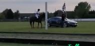 La carrera más loca: Un Tesla Model S contra... ¡un caballo! - SoyMotor.com