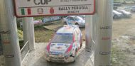 Copa Safari de RC: el mejor rally en el que puedes participar - SoyMotor.com