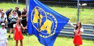 Bandera de la FIA en el GP de Hungría de 2016 - SoyMotor
