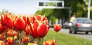 La llegada de la primavera requiere cuidados especiales en tu coche - SoyMotor.com