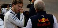 """Marko, sobre Gasly: """"Verstappen habría sido más rápido en Baréin"""" - SoyMotor.com"""