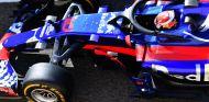 Gasly durante los tests de Abu Dabi con Toro Rosso - SoyMotor.com