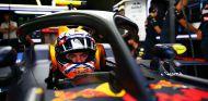 El halo instalado en el monoplaza de Max Verstappen - LaF1