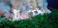 Hamilton se ofrece a ayudar con los incendios del Amazonas - SoyMotor.com