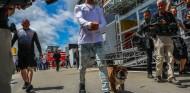 Lewis Hamilton y Roscoe en Barcelona – SoyMotor.com