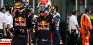 Hartley y Gasly durante el GP de Abu Dabi 2017 - SoyMotor.com