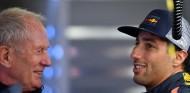 Helmut Marko y Daniel Ricciardo - SoyMotor