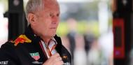 Helmut Marko va por libre en un mundo tan regulado como la F1 - SoyMotor.com