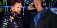 Christian Horner y Helmut Marko - LaF1