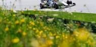 AlphaTauri en el GP de Austria F1 2020: Domingo - SoyMotor.com