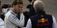 Marko recuerda a Gasly que en Red Bull sería el escudero de Verstappen - SoyMotor.com