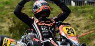Max Verstappen en 2013 - LaF1