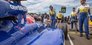 Felipe Nasr en la parrilla de salida de Hungría - LaF1
