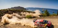 Rally Turquía 2019: Ogier siempre vuelve - SoyMotor.com