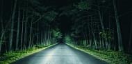 La carretera del bosque - SoyMotor.com