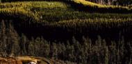 El WRC no irá a Chile en 2020; España, posible sustituto - SoyMotor.com