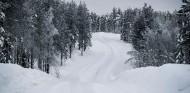 Arctic Rally Finland, ¿la hora de Kalle Rovanperä? - SoyMotor.com