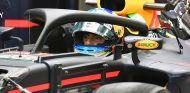 Daniel Ricciardo con el halo en Singapur - SoyMotor.com