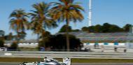 Nico Rosberg con el Mercedes W06 Hybrid en los test de Jerez - LaF1