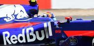 Toro Rosso en el GP de Hungría F1 2017: Previo - SoyMotor.com