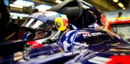 Marko está satisfecho con los pilotos de Toro Rosso, pero destaca algo más a Verstappen - LaF1