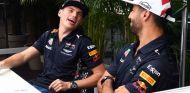 Max Verstappen y Daniel Ricciardo en Austin - SoyMotor.com